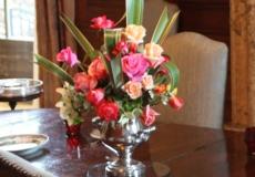 Filoli-Roses-Spring-2011_104