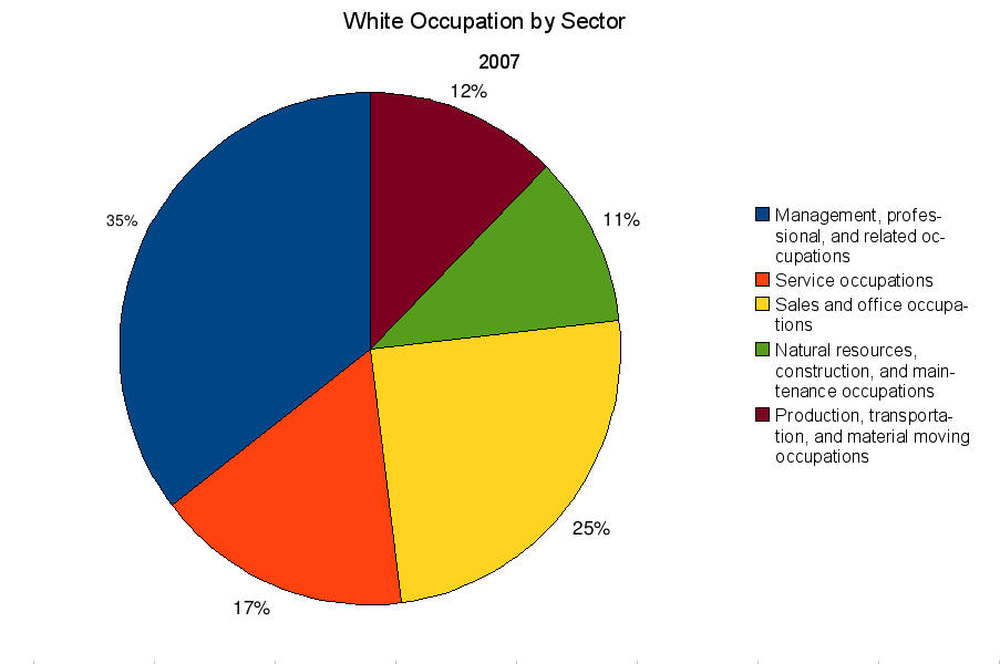 White American occupation by sector 2007
