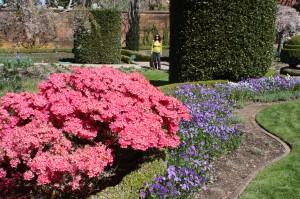 Filoli-Spring-2100_IMG_0597