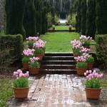 Filoli-Spring-2013-15-03_046_A_res90